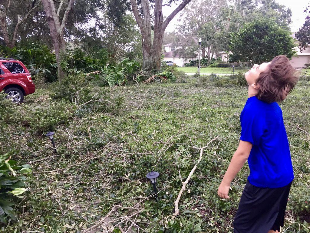 Hurricane Irma cleanup