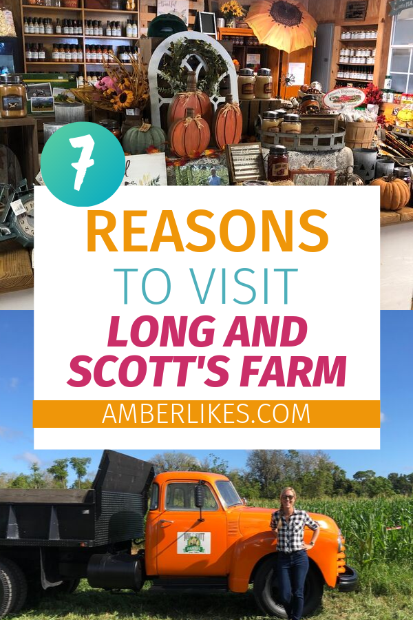 Are you looking for Central Florida Fall activities? Check out Long and Scott's Farm as Orlando travel blogger, Amber Likes shares the experience!
