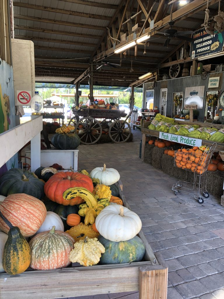 Fall farm Central Florida