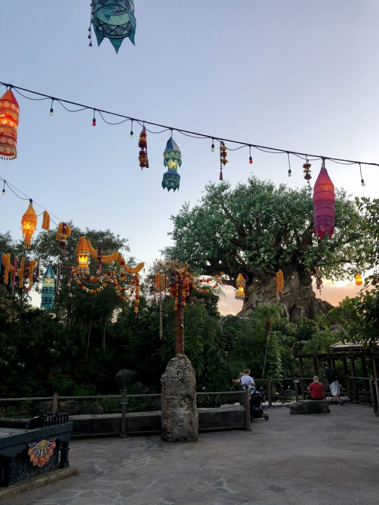 Asia at Animal Kingdom Christmas
