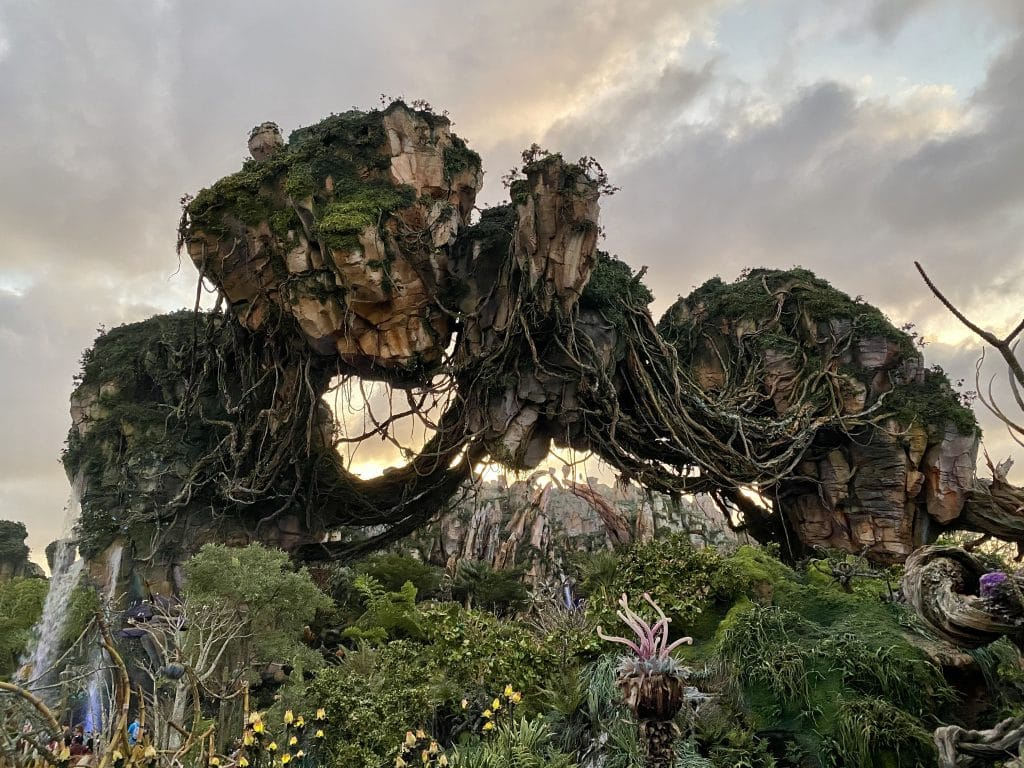 animal kingdom pandora