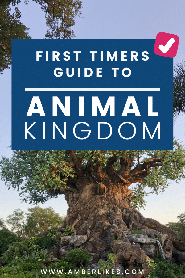 Looking to visit Disney's Animal Kingdom for the first time? Be sure to read all of my tips for visiting Animal Kingdom before you visit on your family vacation!